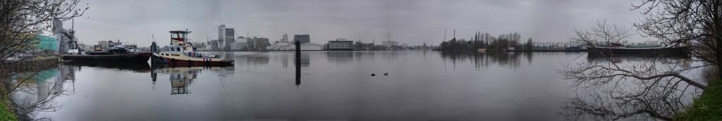 3-NL-NH-Zaandam-Kalf-2013-11-17-6