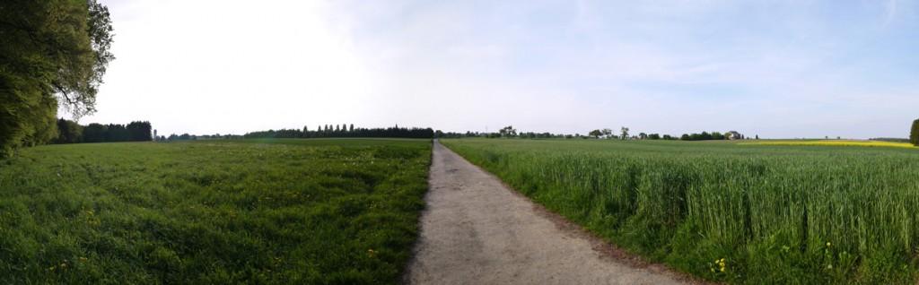 8 LU Consdorf 2014-05-04 (1)