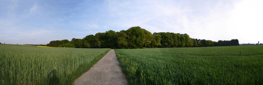 9 LU Consdorf 2014-05-04 (2)